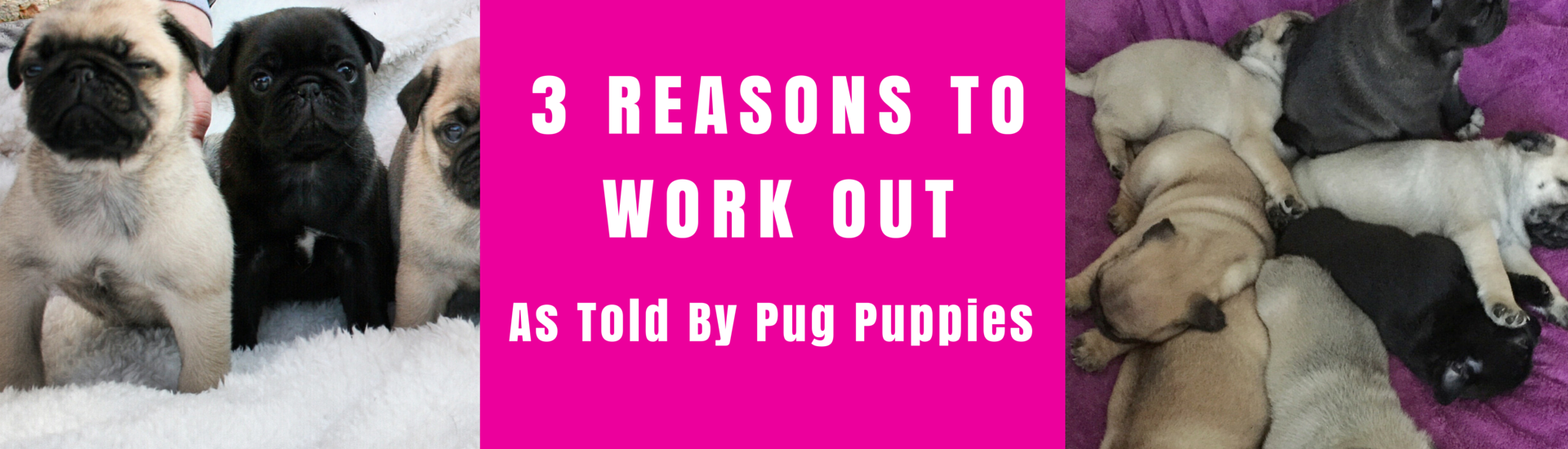 3 Reasons to Work Out